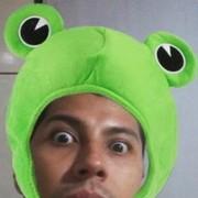 sapossauro's Profile Photo