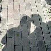 Dila_FMG's Profile Photo