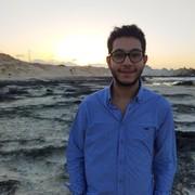 MohamedWalidMW's Profile Photo