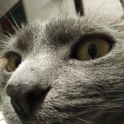 patii125's Profile Photo