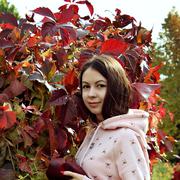 irafoxik's Profile Photo