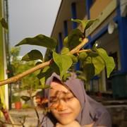 Judythia's Profile Photo