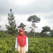suciaisyah_12's Profile Photo
