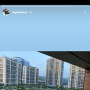 tontaroja_q's Profile Photo