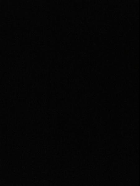 elifx50's Profile Photo