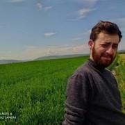 Mister_Qedimov's Profile Photo