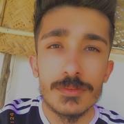 dano_dno's Profile Photo