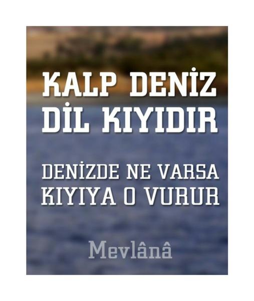 AleynaYaseminKardestir's Profile Photo