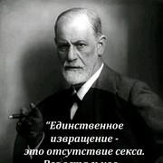 timvolkj's Profile Photo