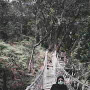 ayuangraini082638's Profile Photo