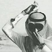 q_q_14's Profile Photo