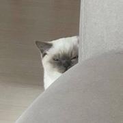littlebi8611's Profile Photo