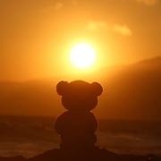 teddy7766's Profile Photo