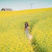 dolinhchi2's Profile Photo