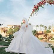 ayaessam725's Profile Photo