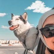 shimaa155's Profile Photo