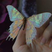 vuklinh05033628's Profile Photo