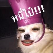 JJeen_SG's Profile Photo