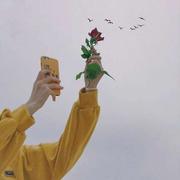 rororoby46's Profile Photo