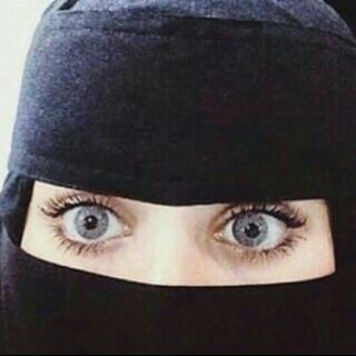 amoolhamed's Profile Photo