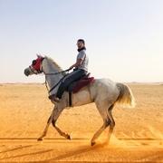 abo14suliman's Profile Photo