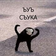 Yapyap_'s Profile Photo
