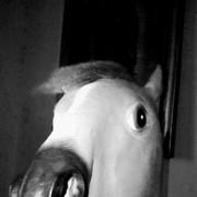 JoshElvizRosales's Profile Photo