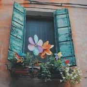 amalabdelfatah388's Profile Photo