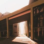 AnsamSalameh's Profile Photo
