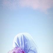 haneen_Alaa's Profile Photo