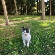 irem_1444's Profile Photo