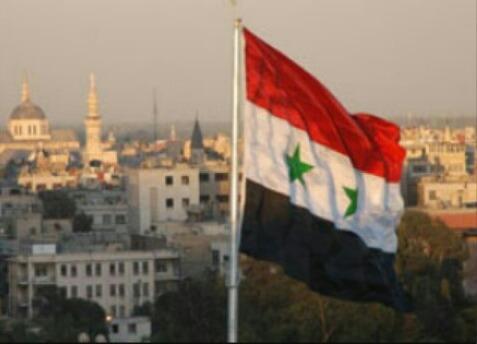 syria_543's Profile Photo